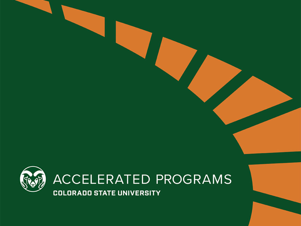 Accelerated Programs